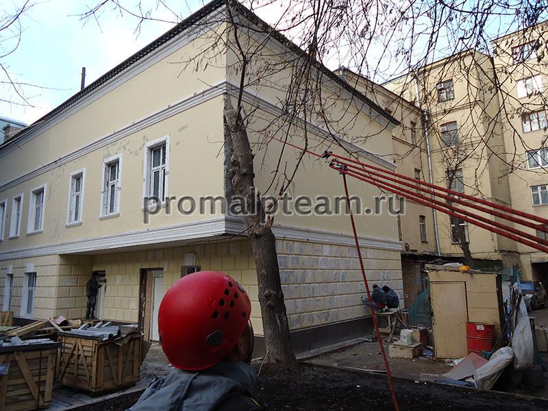 Дерево мешает дому